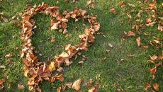 """""""Wrzesień nastraja romantycznie"""""""