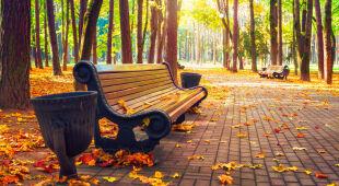 Astronomiczna jesień