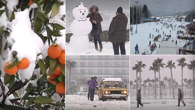 Zima w Soczi: palmy pod śniegiem, na plażach bałwany
