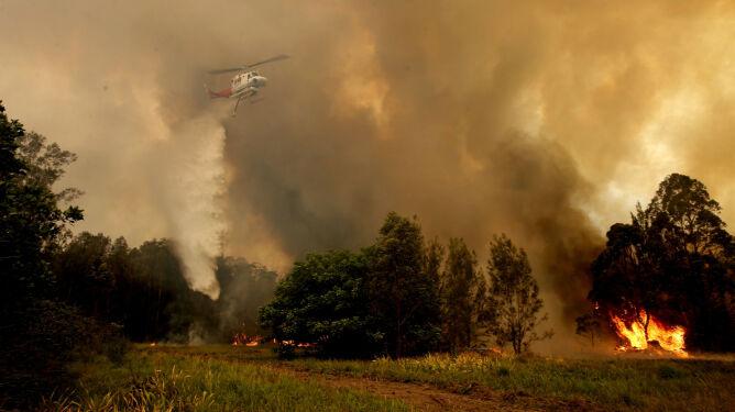 Coraz więcej ofiar pożogi w Australii. Pogoda nie sprzyja gaszeniu ognia
