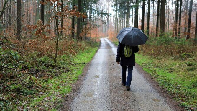 Pogoda na dziś: deszczowa aura <br />w całym kraju, do 14 stopni