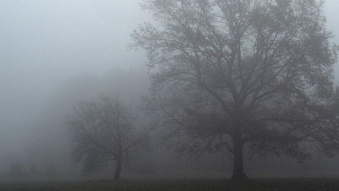 Prognoza pogody na dziś: <br />pochmurnie i mglisto