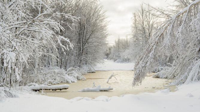 -20 st.C w nocy, dziś dużo śniegu. <br />Zima jeszcze się nie poddaje