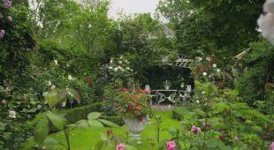 Ogród na holenderskim polderze (odc. 771 / HGTV odc. 33 serii 2020)